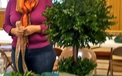 Holiday HOW-TO Workshop: Make your own holiday topiary