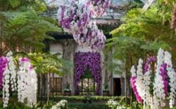 Summer in the Gardens – Wednesday-Friday, August 22-24
